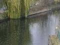 Landwehrkanal (4)