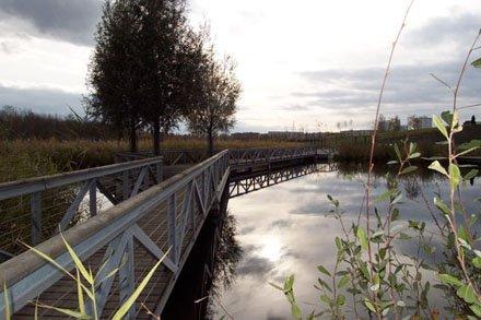 Wiesenpark (2)